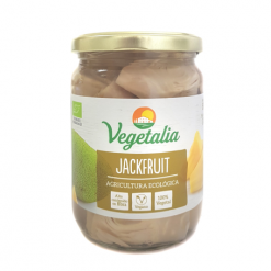 jackfruit-eco-vegetalia